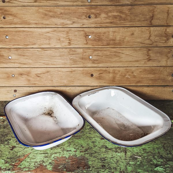 Pair of Traditional White and Blue Enamel Baking Trays