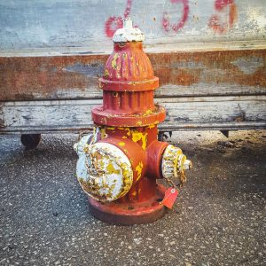 American Red & White Fire Hydrant