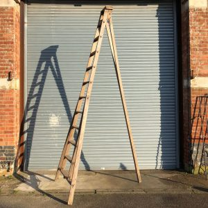 Large Orchard Ladder