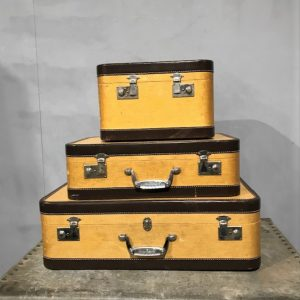 Set Of Matching Wheany Suitcases